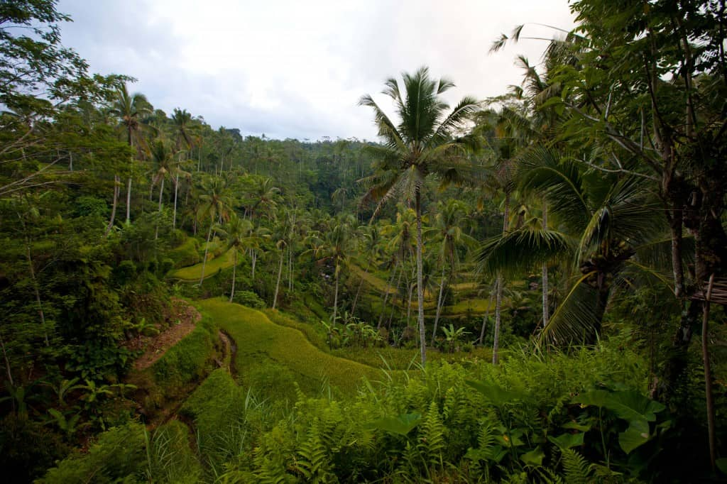 5 Day Itinerary in Bali Indonesia