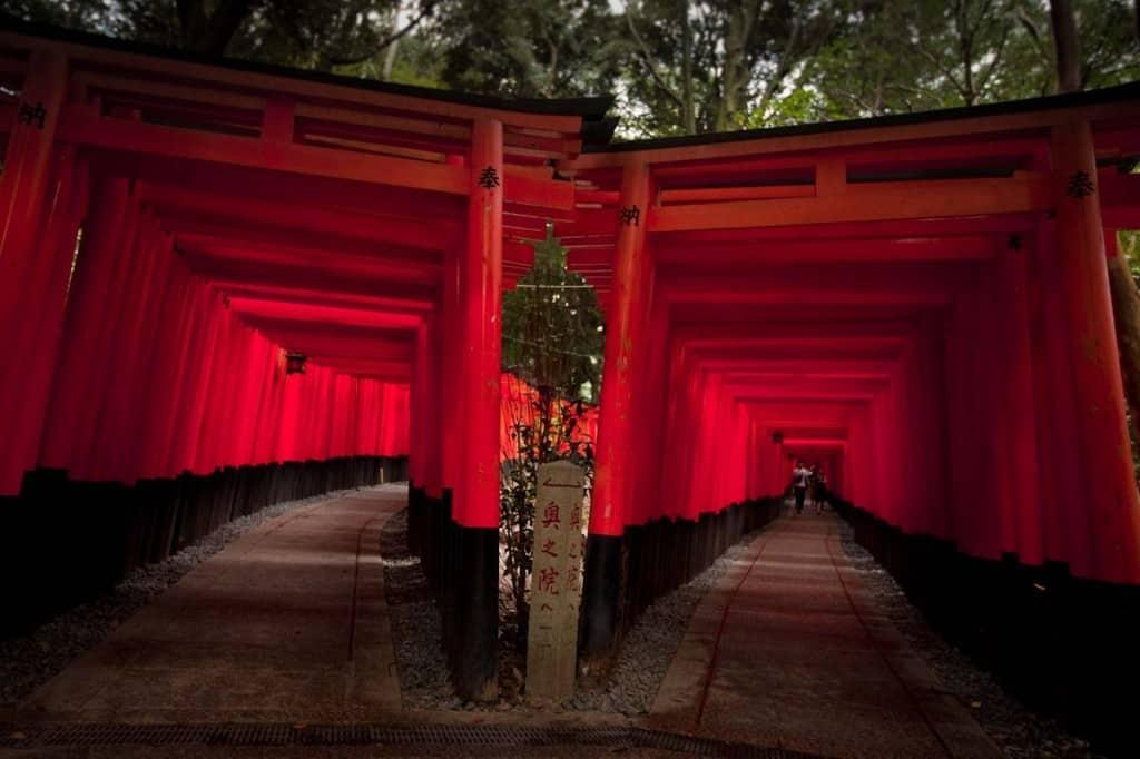 The reason why you come to Fushimi Inari
