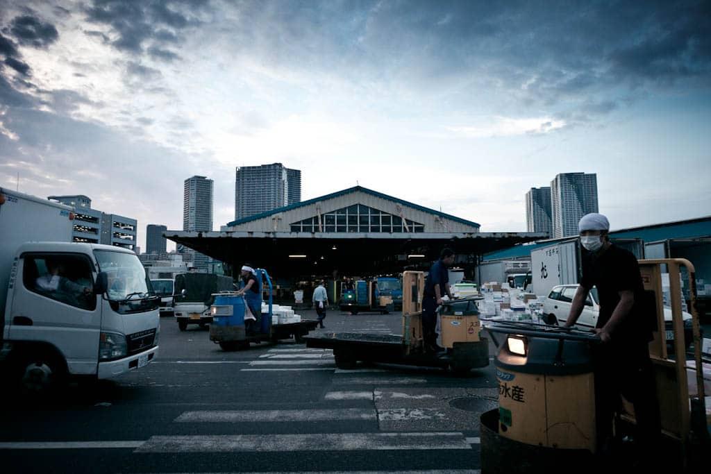 tsukiji fish market as part of 12 day japan itinerary