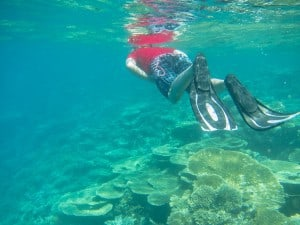 After our afternoon snack we went out for another snorkel in the house reef. Didn't see anything big sadly.