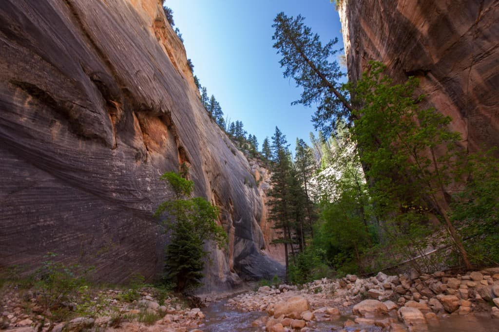 towering canyon walls on the narrows hike