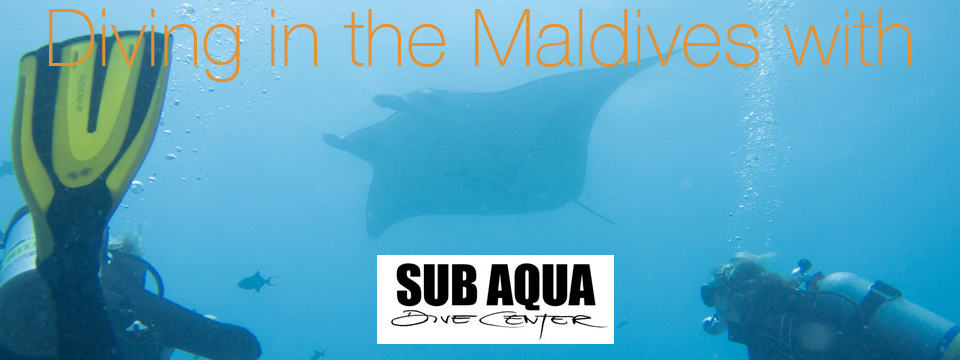 Conrad Maldives Diving with SubAqua