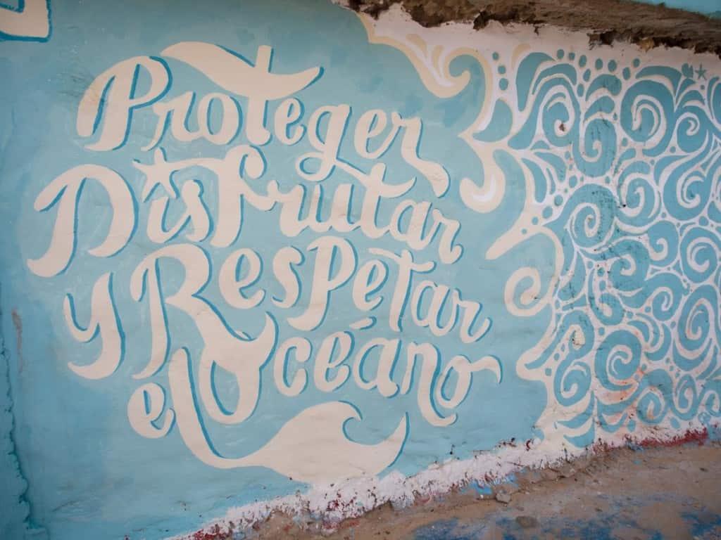protect enjoy and respect the ocean graffiti at macao surf camp near punta cana