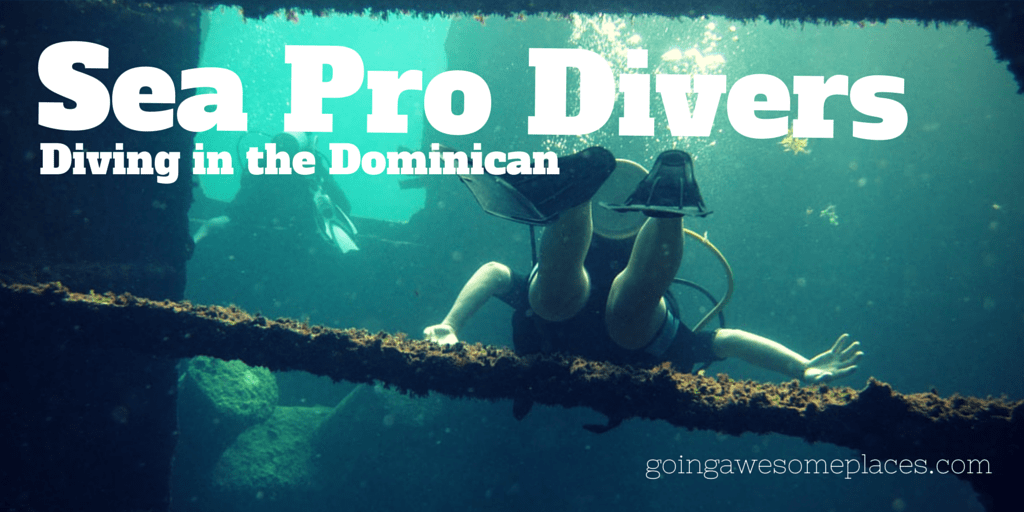 Diving with Sea Pro Divers in the Dominican Republic