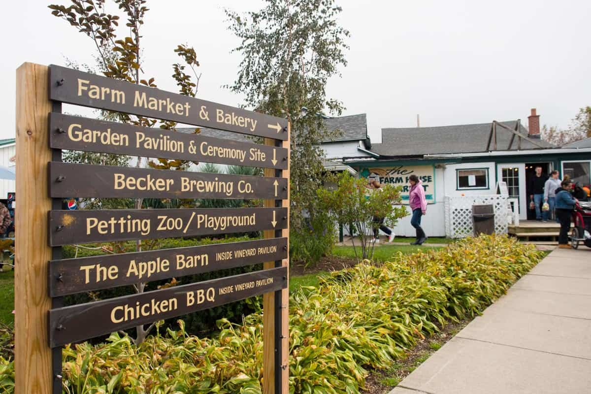 All the different things you can do at the farm/winery.