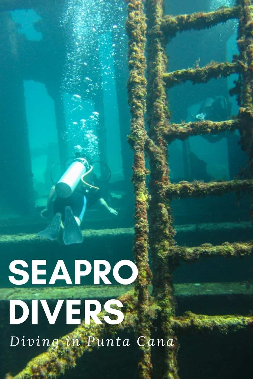 Scuba with SeaPro Divers in the Dominican Republic