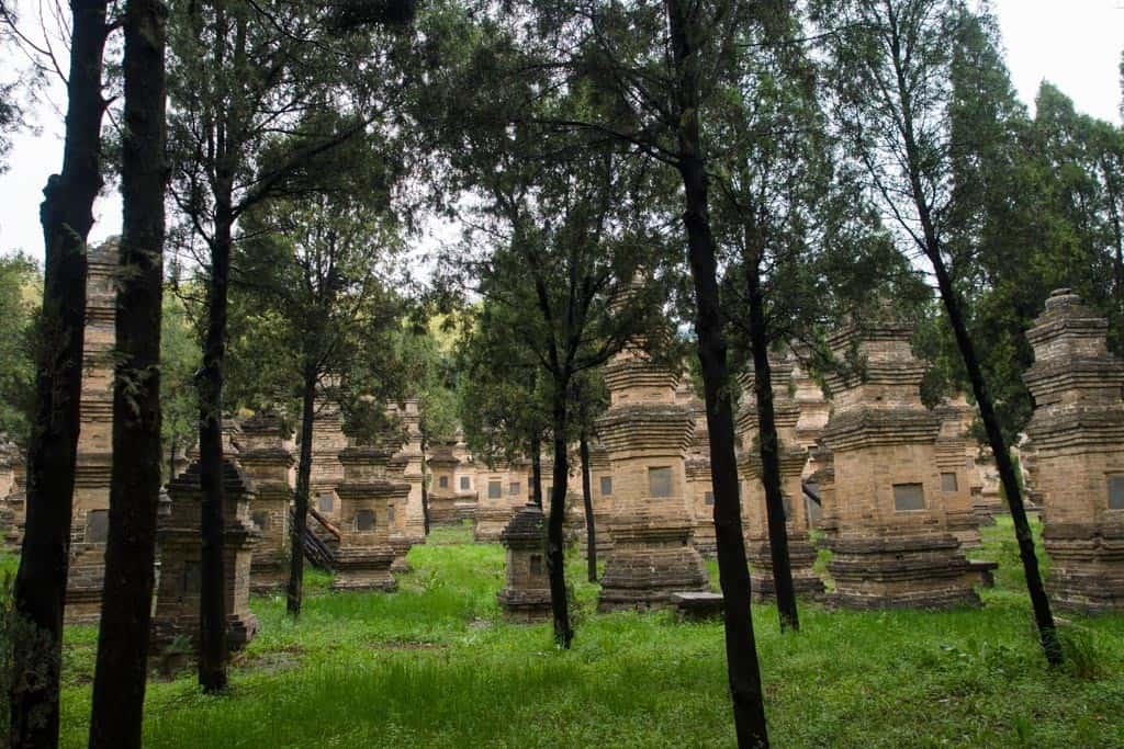 The Pagoda Forest at Shaolin looked a lot different than I had imagined.  In my head I was thinking it would be more of a forest path but instead it turned out to be really a giant cemetery of these stupas built to commemorate various monk leaders over the years at Shaolin.