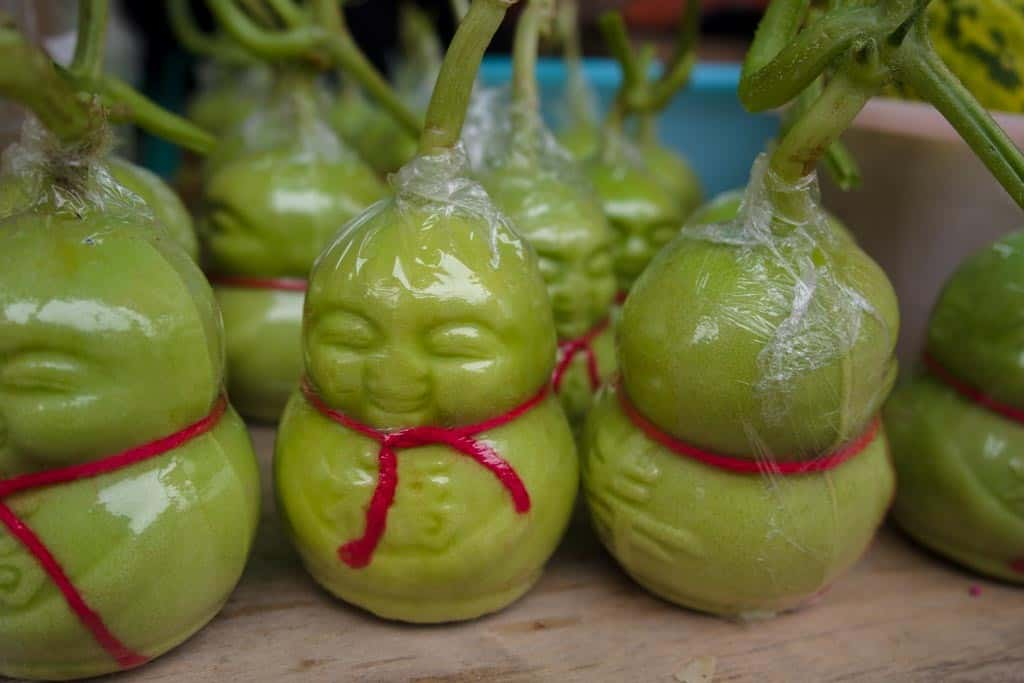 Little Buddha Fruit