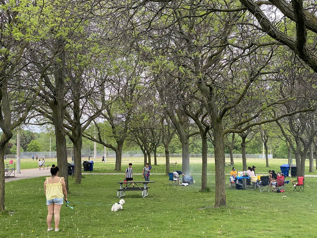 which toronto parks can you bbq in with your own grill byog