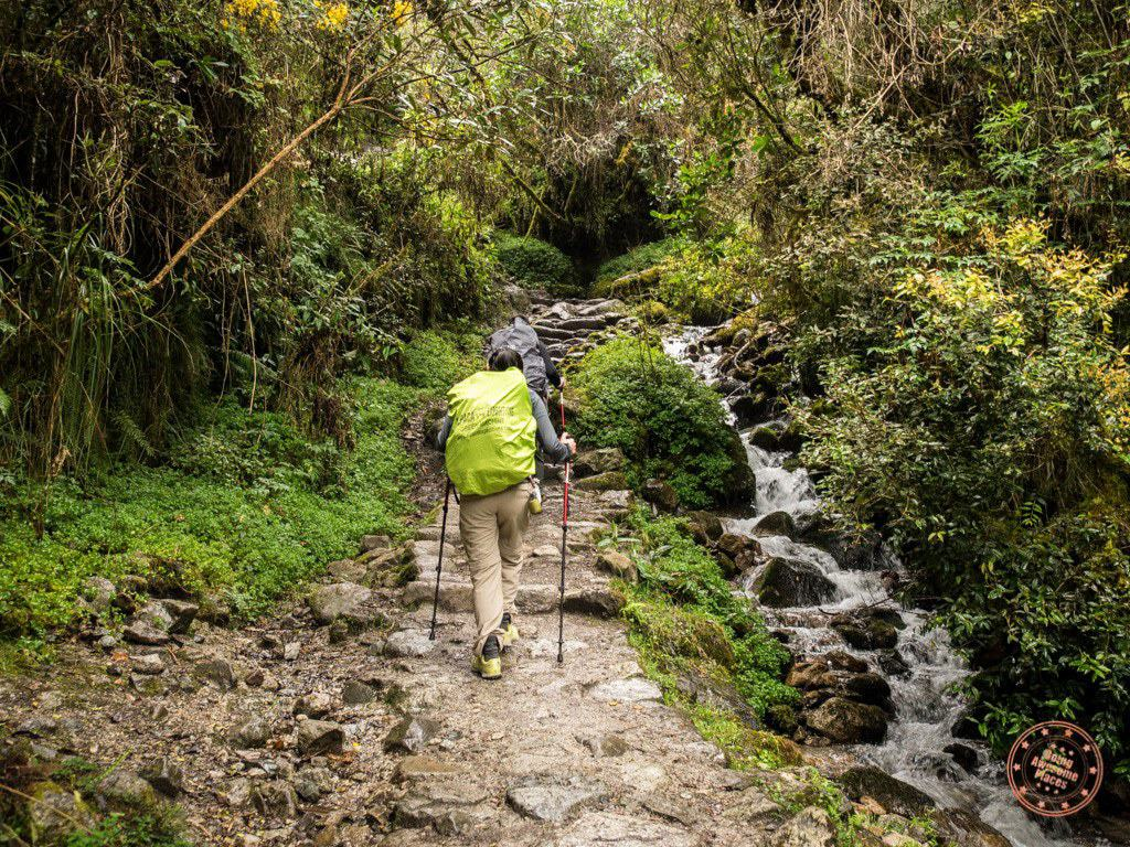 Quite the change in landscape as we hiked up a trail full of lush green life and a waterfall.