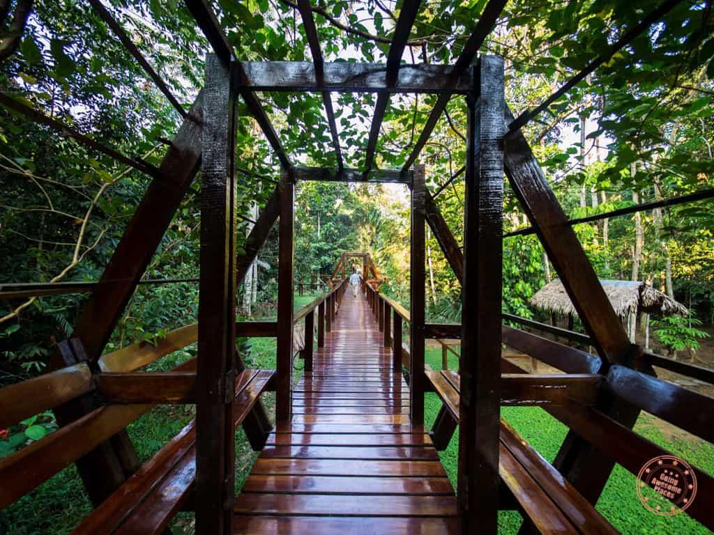 wooden walkway path to the refugio amazonas suites
