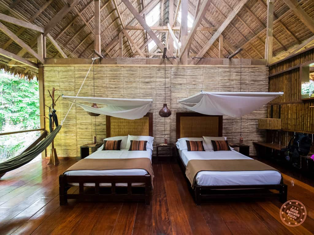 two queen beds at the refugio amazonas in peru amazon jungle