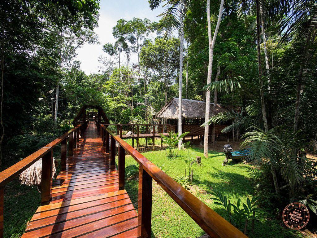 Wooden Walkways of Refugio Amazonas in the Peruvian Amazon
