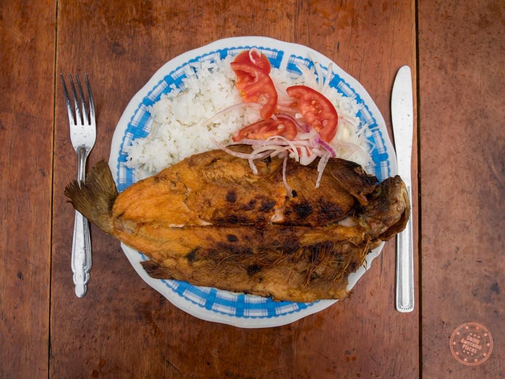 Local Peruvian Dinner