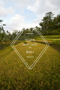Must See in Bali Pinterest