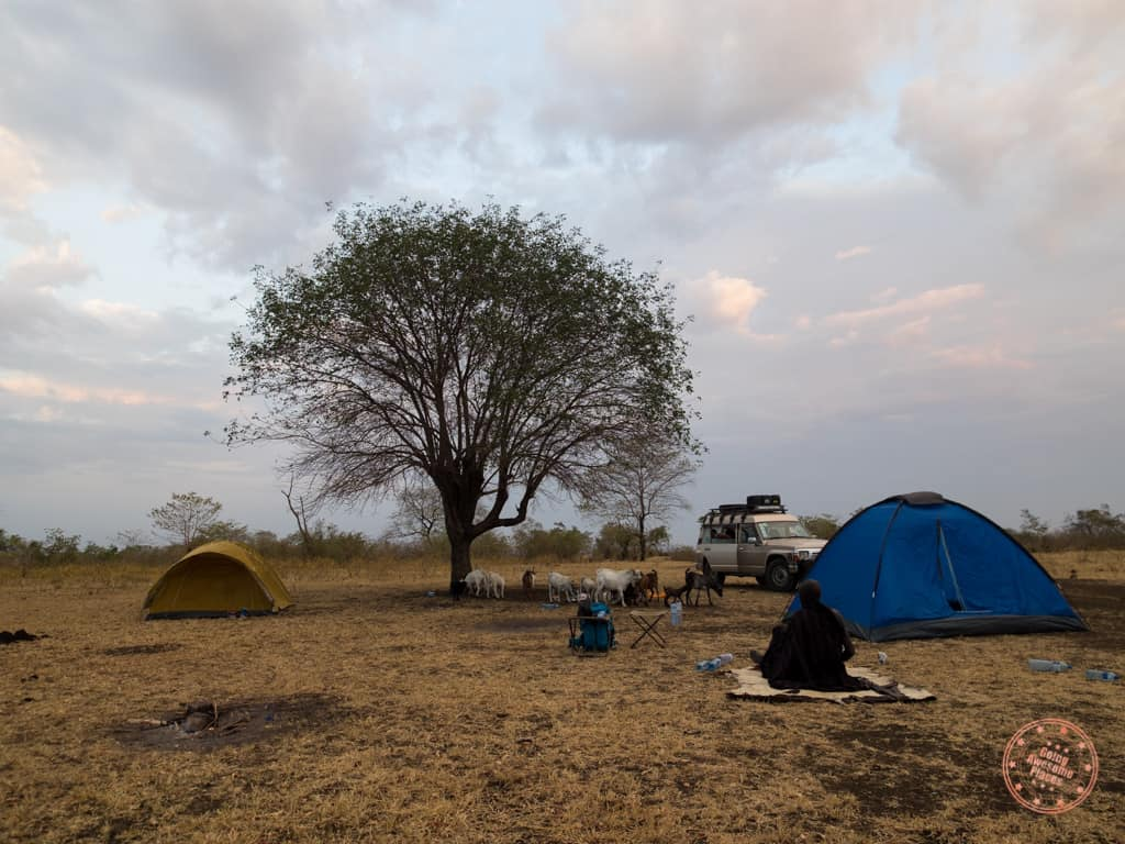 mursi campsite prior to donga in the morning omo valley ethiopia