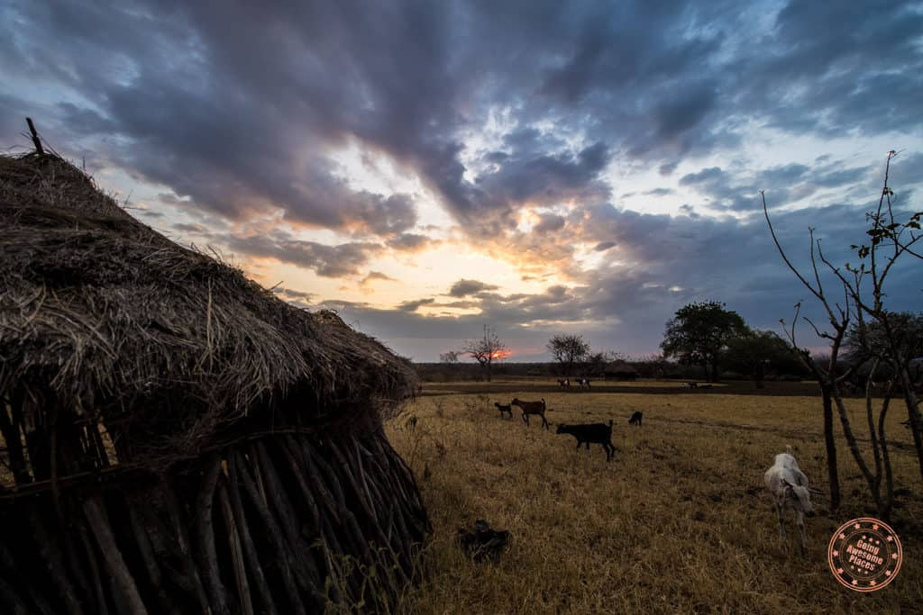 Mursi Tribe Sunrise With Hut In Foreground