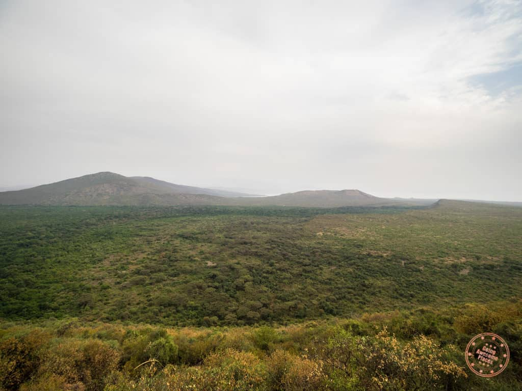 view of nechisar national park from swaynes lodge ethiopia