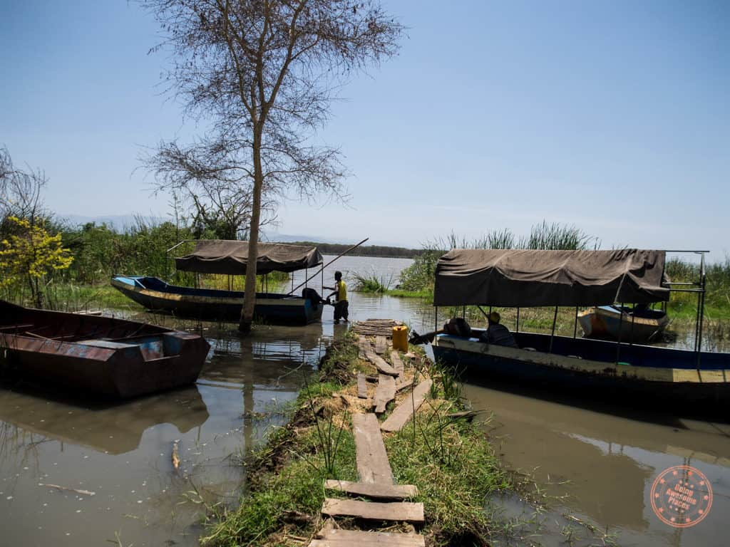 Boat Tour of Lake Chamo