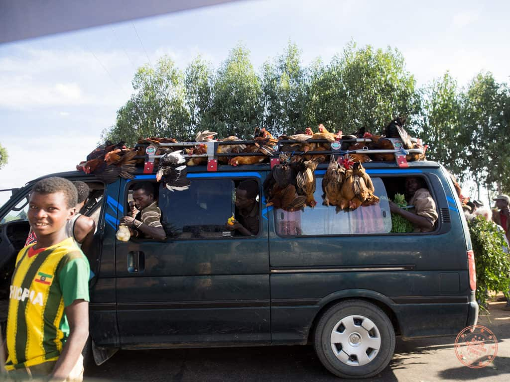 chickens hanging off of van during drive towards omo valley in ethiopia itinerary