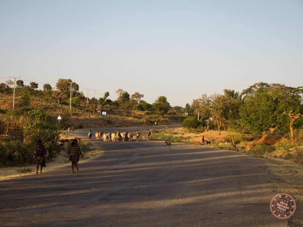 Traffic Jams in Ethiopia