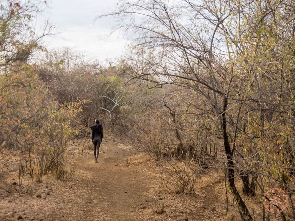walking down with mursi tribe chief to watering hole in omo valley ethiopia