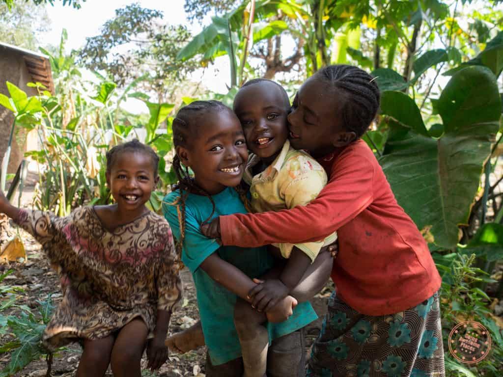 The Children of Ari Tribe