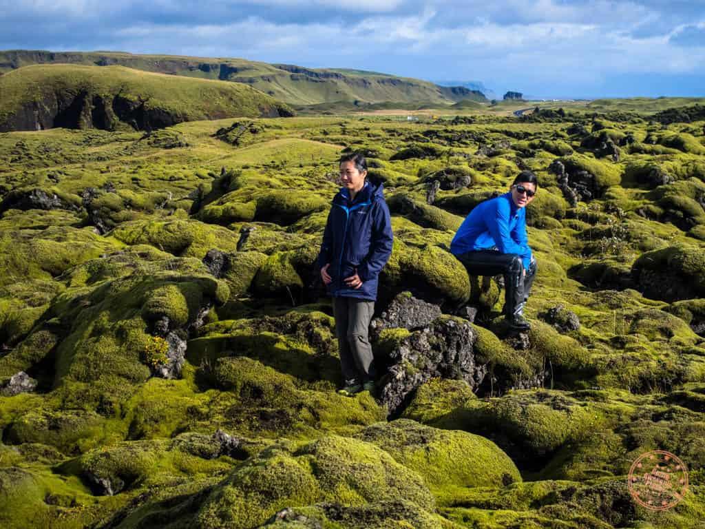 mossy lava rocks in iceland