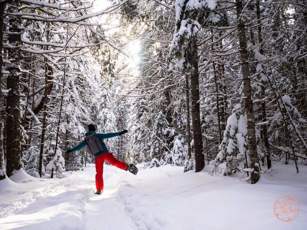 Algonquin is a snowshoeing paradise with endless possibilities. Travel one of the interpretive trails along the highway or make your own. If you need to rent, there are many outfitters conveniently located around the park