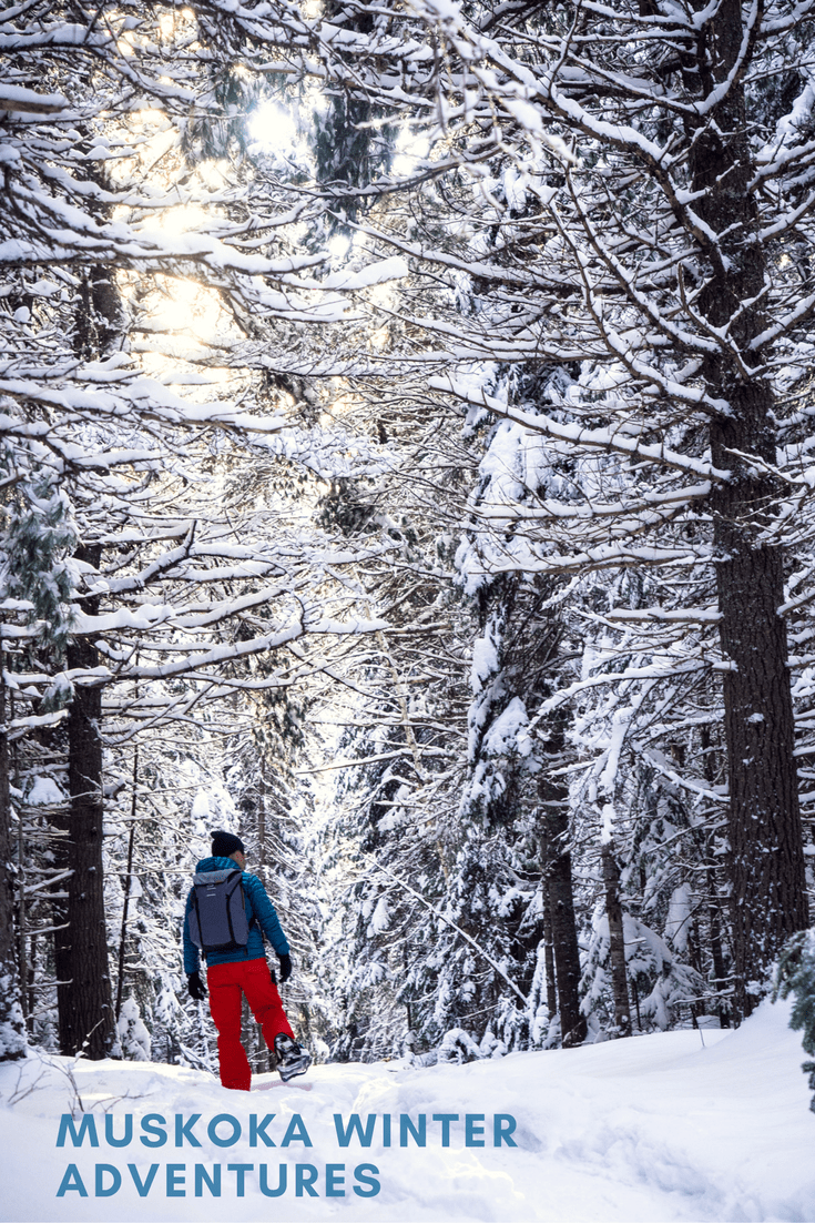 Winter Adventures In Muskoka