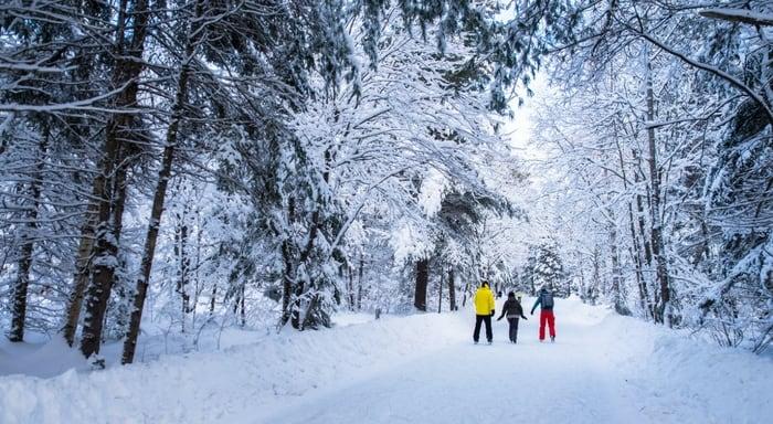 Winter Adventures In Muskoka