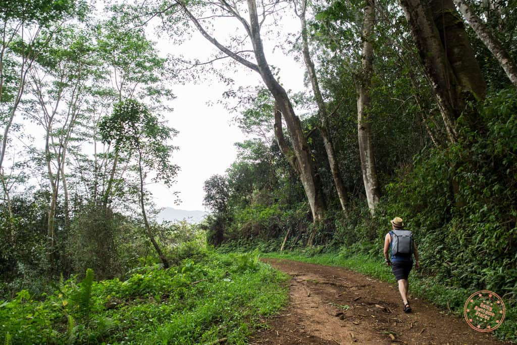 hiking in the jungles of hawaii in this review of world nomads travel insurance