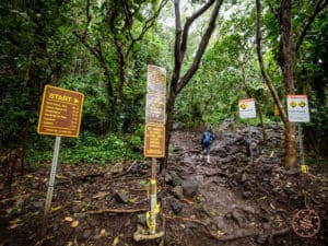 Start to Kalalau Trail