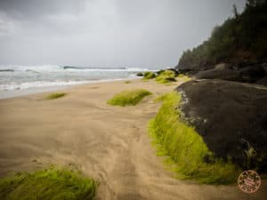 Mossy Lava Rocks at Hanakapi'ai Beach
