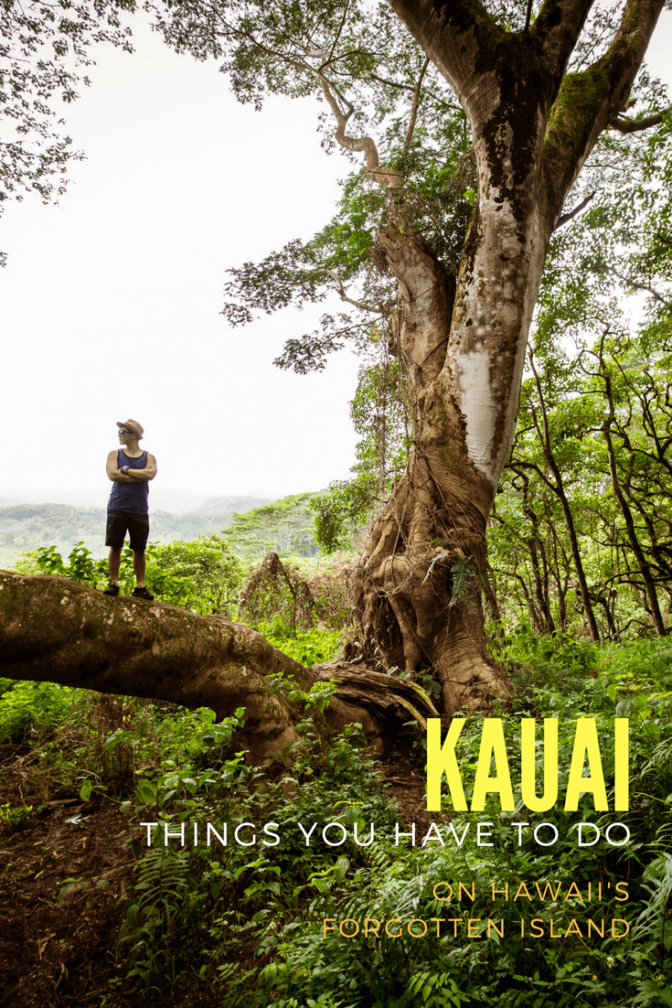 Kauai is a garden island paradise and for all the must-do's, here's a list of the top 10 things you should do that includes food, hikes, and beaches.