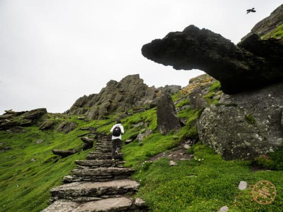 Hiking Up Skellig Michael to See the Monastery