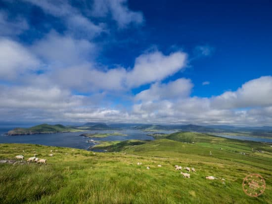 View Of Kerry From The Top Of Geokaun Mountain