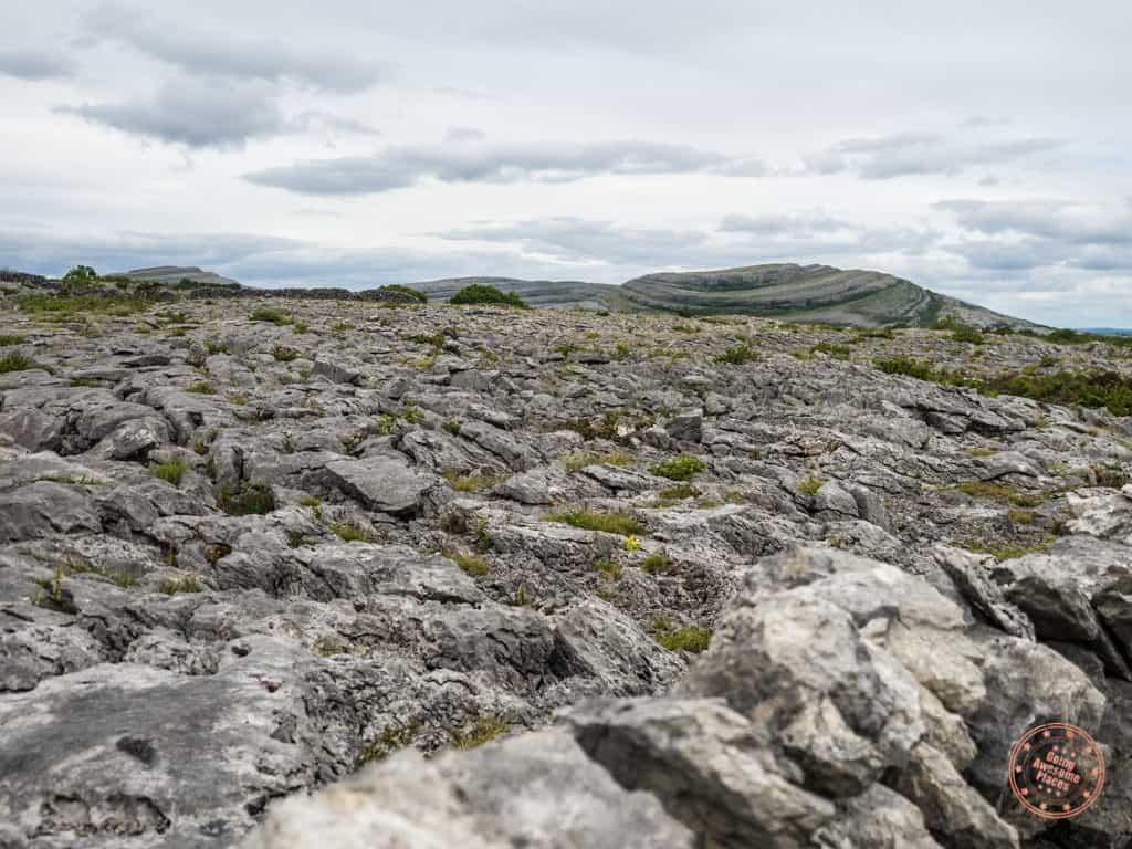 Rocky landscape of Burren National Park in Ireland