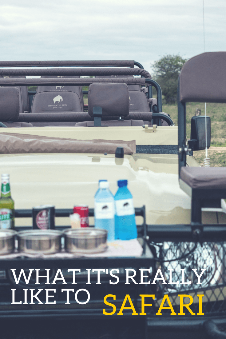 Who else thought that safari in South Africa would be like Lion King?  It is in fact not at all.  I uncover my initial thoughts about our safari experience at both Elephant Plains in Sabi Sands and Kruger National Park doing self-drive and how incredible it was with all the animals that we saw in the wild.