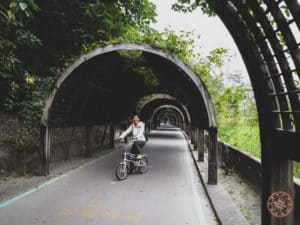 Taitung Forest Park Tunnel