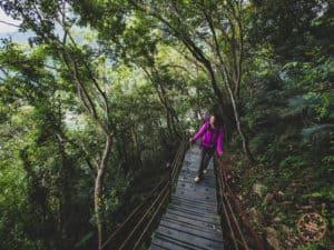 Hiking Up Dekalun Trail in Taroko National Park