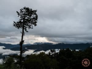 Alishan sunrise at Chusan with tree in the way