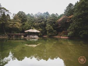 Alishan Big Sister Pond