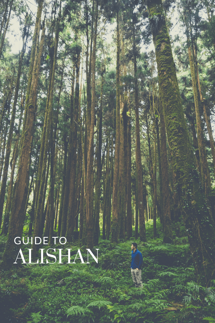 Planning a trip to Alishan can be complicated especially when most of the information online isn\'t in English and doesn\'t encompass everything you need to know. This guide is meant to answer all of your questions as you put together your itinerary for the famed forests of Alishan in Taiwan. Inside you\'ll find detailed information on how to get there by train or by bus, what to see, where to stay, and the famous sunrise. #alishan #taiwan #travelguide