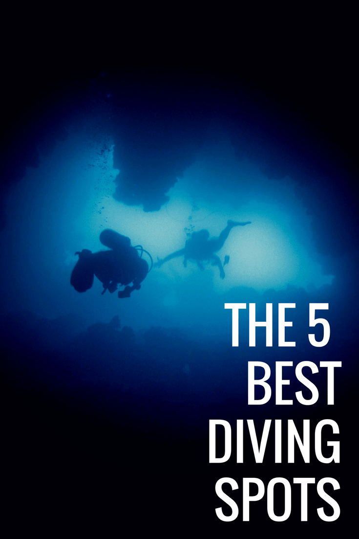5 Of The Best Diving Spots In The World To Travel To