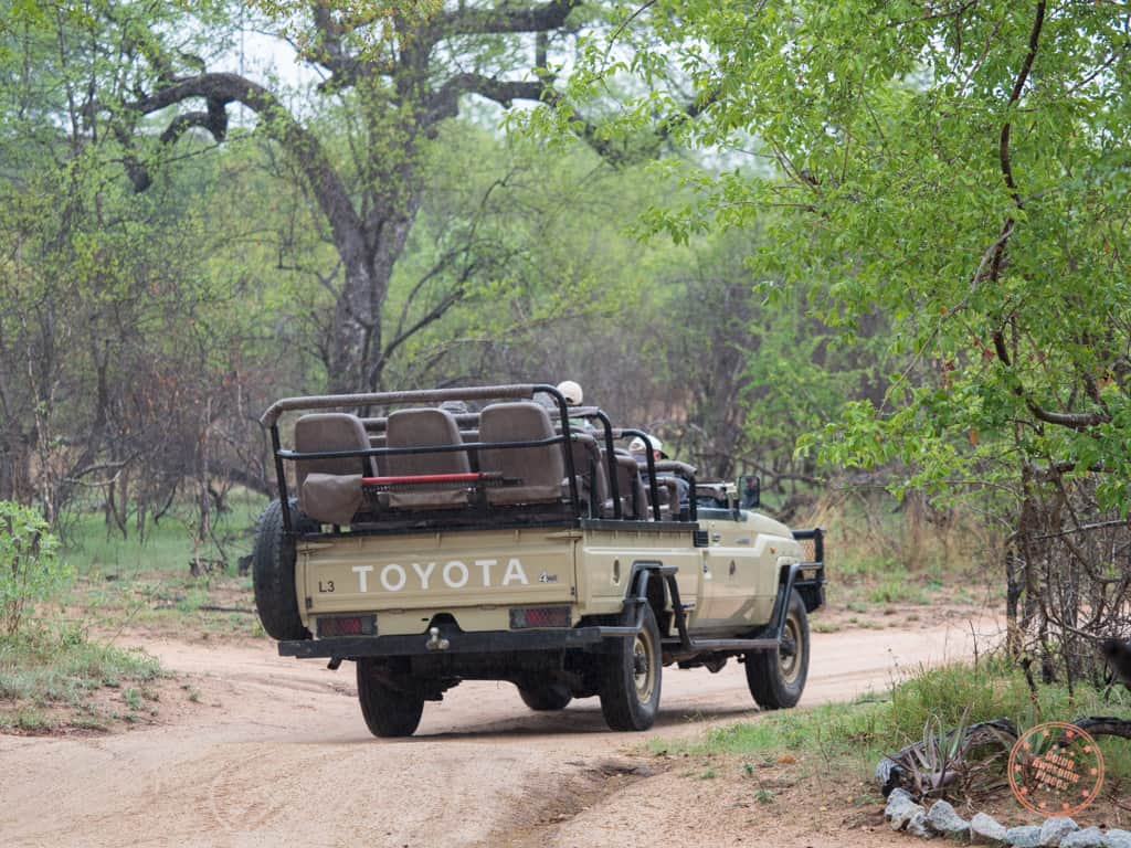 game drive truck from behind