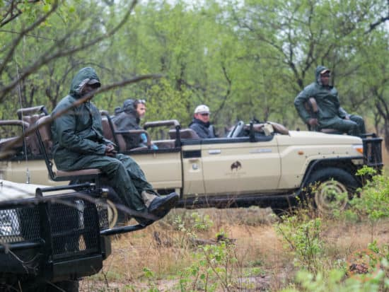 two game drive trucks from Elephant Plains watching wildlife