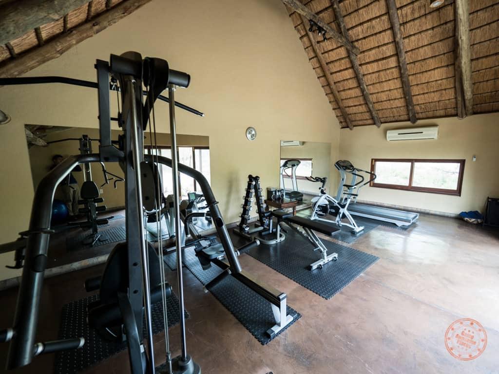 elephant plains gym