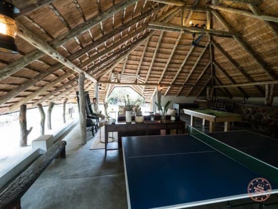elephant plains game room