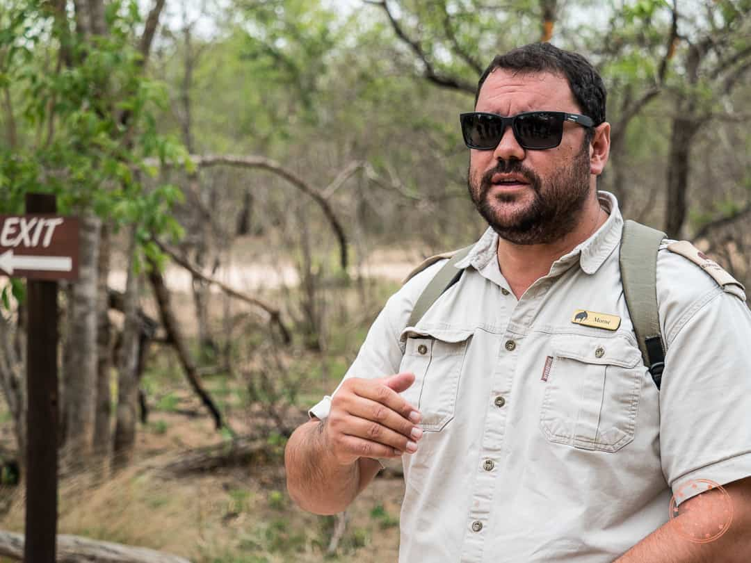morne driver and guide at elephant plains